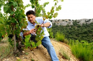 Jean-Luc COLOMBO, vigneron à Cornas. Ardèche. 25 Août 2009.
